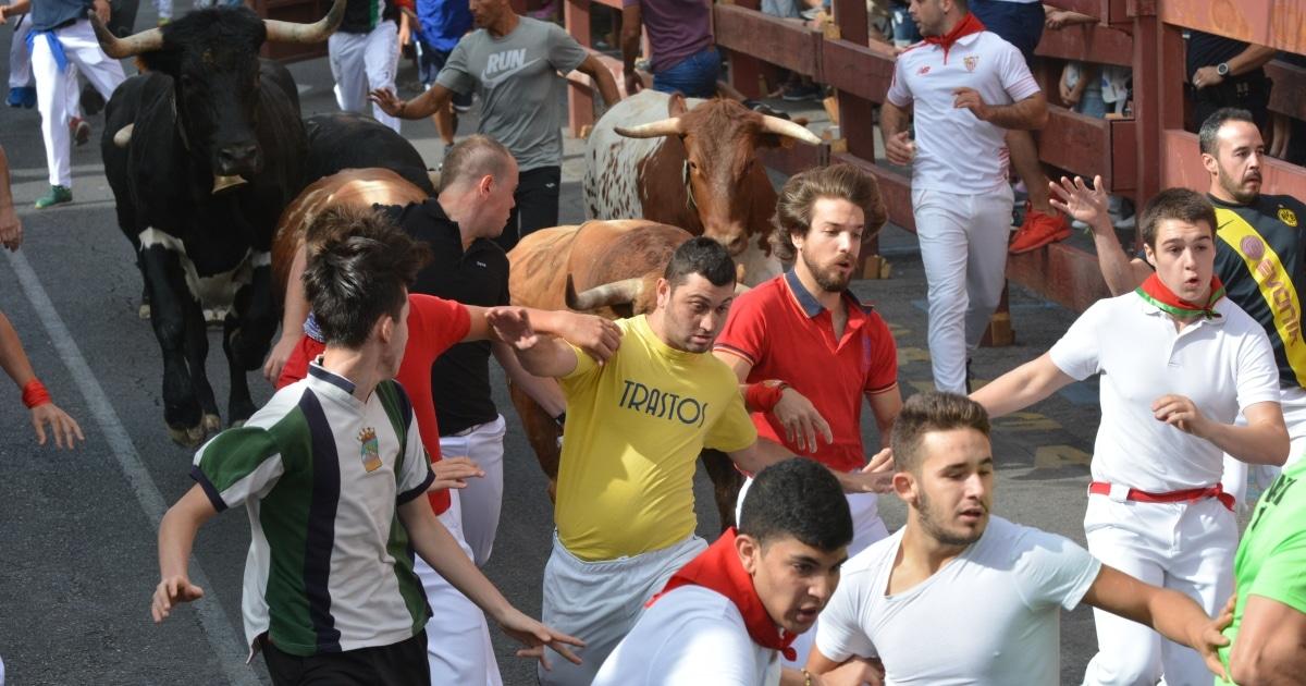El tema del microrrelato versará sobre cualquier aspecto relativo a los festejos taurinos populares de correr toros