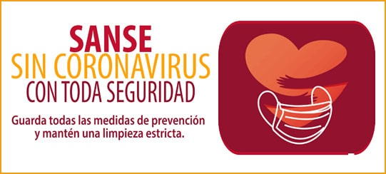 https://laplazadesanse.es/wp-content/uploads/2021/02/banner_san_sin_coronavirus.jpg